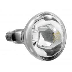 Ampoule infrarouge - 250 W Bartscher Accessoires et pièces détachées